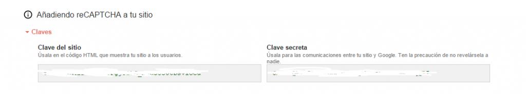 API RECAPTCHA